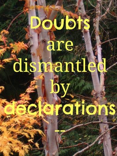 doubts-declarations